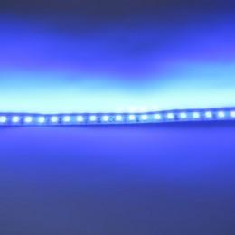 Лента 2835 120 Led IP33 Blue Высший класс