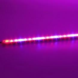 Светодиодный светильник линейный ФИТО P360 (12V, 24W)