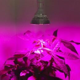 Светодиодная лампа Алмаз-12